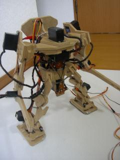 Robo20071123_1