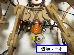 Robo20061118_1