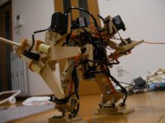 Robo20061208_1